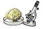 LPR : Quel est le Problème ? L'indépendance des chercheurs ?